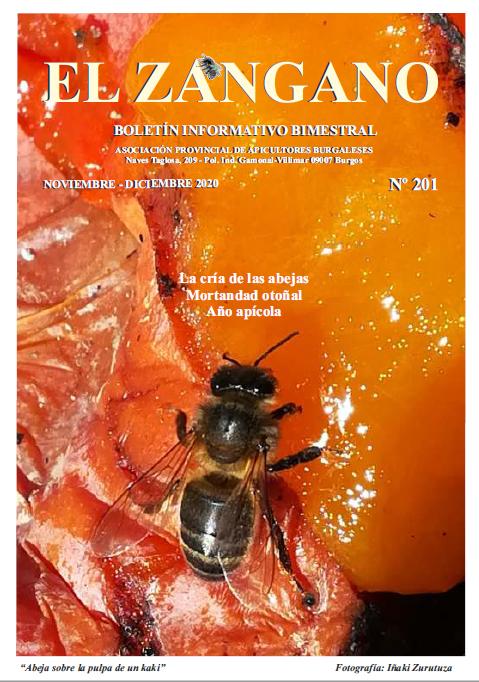 201 portada