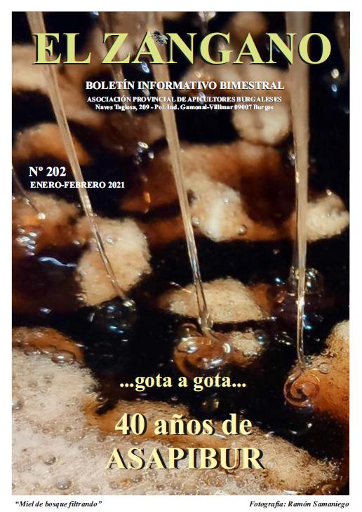 202 portada