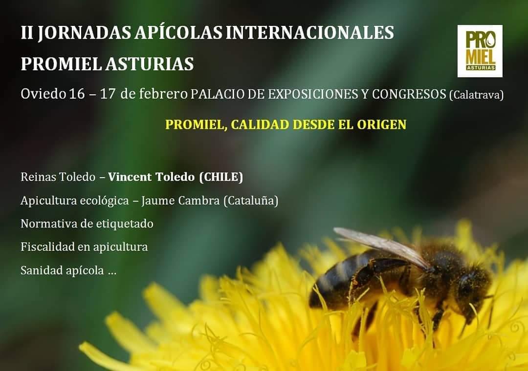 Asturias promiel 2019